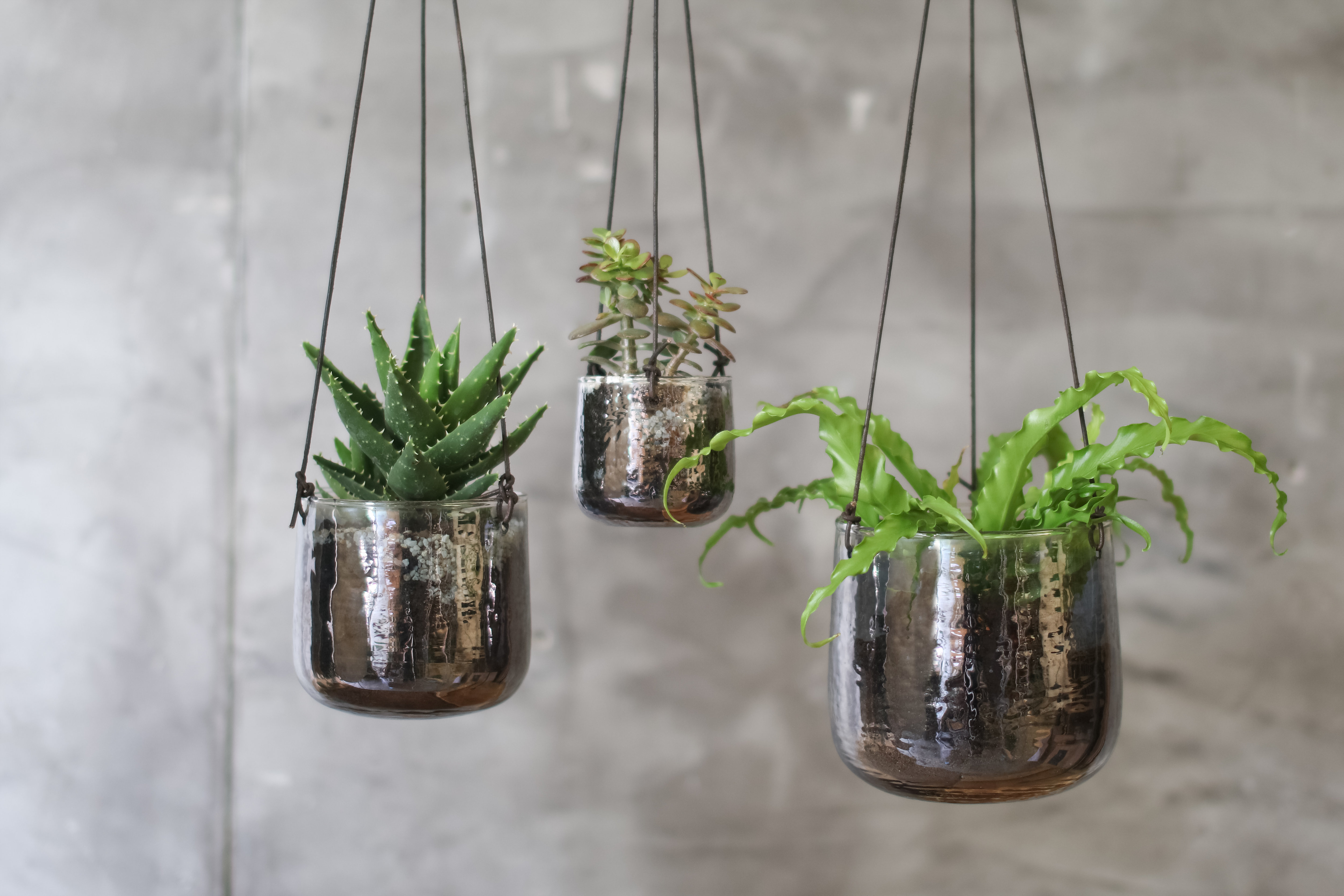 aged-silver-glass-handing-planter-medium