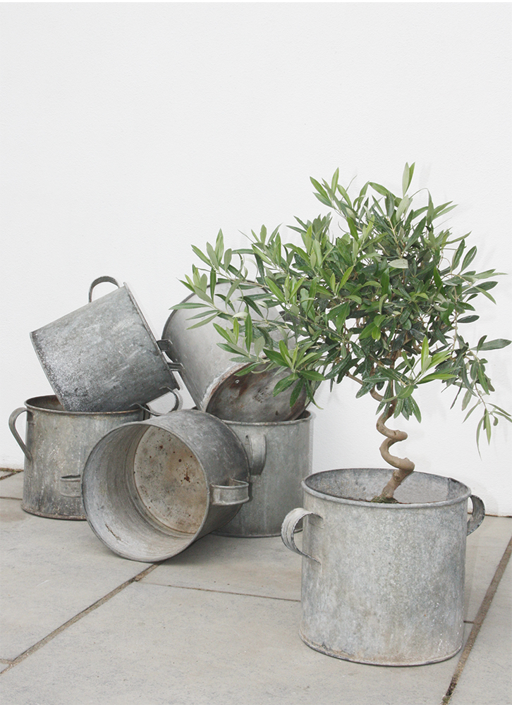 antique-zinc-garden-planter